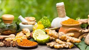 Ayurvedic Products – Protective, Preventive and Curative